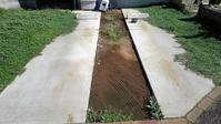 駐車場のクラピア端切り - うちの庭の備忘録 green's garden