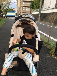 2歳2ヶ月9日。38週3日の散歩 - こんな私のはじめての妊娠・出産…そして子育て真っ最中
