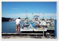 岸和田漁港の新鮮シラスの朝ごはん&酒蔵巡り:ご近所プチトリップ - Le temps pur  - ル・タン・ピュール  -