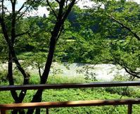 雨上がりの濁流 - 金沢犀川温泉 川端の湯宿「滝亭」BLOG
