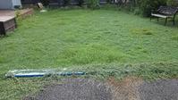 クラピアの端切り - うちの庭の備忘録 green's garden