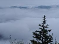 早朝の美ヶ原 - 鹿深の森