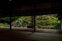 智積院・サツキ咲く庭 - 花景色-K.W.C. PhotoBlog