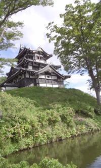 【夜桜が有名な高田に来ています】 - お散歩アルバム・・秋の徒然