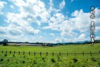 田舎あそび沢あそび - natsunana