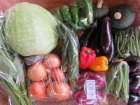 今週の野菜セット9月3週目 - まるみど農園のあれこれ日記