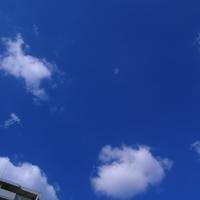 Sun 3 Sunday in  September - 時色