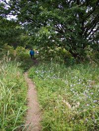 榛名山から赤城自然園へ - 岩月澄子-時の欠片を拾い集めて・・・