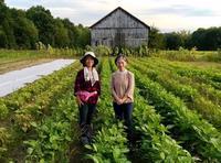 自然栽培の畑で農業体験! - 玄米菜食 in ニュージャージー