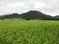 台風18号接近 - 妙見山麓をわたる風