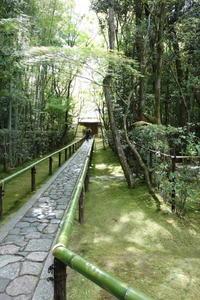 2017年春の京都&大阪★その3 「高桐院」でまったり&LL Beanのトート - norin★diary