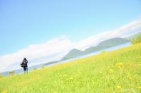 洞爺湖とタンポポ - GreenLife