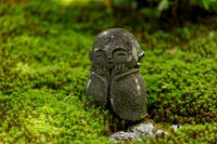 緑とサツキの圓光寺 - 花景色-K.W.C. PhotoBlog