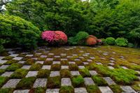 東福寺方丈庭園のサツキ - 花景色-K.W.C. PhotoBlog