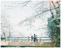 Film #ばぁちゃんと散歩 - ココロハレ*