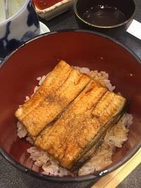 寿司飯うな丼 - めでこのゴハンノオト