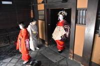 島原ぞめきまいまい京都輪違屋コース - 花街ぞめき  Kagaizomeki