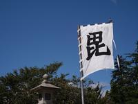 Snap No226 - 東京Shy 写歩く