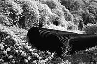 赤外線で炙り出された二つのワームホール - Film&Gasoline