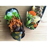 鶏団子残骸と人参カレー金平BENTO - Feeling Cuisine.com