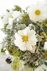 白い秋♪コスモスとキャロットソバージュ - お花に囲まれて