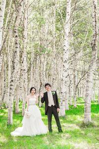 白樺の森 - Io e Lei*