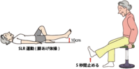 変形性膝関節症 その4 予防と治療 - 横浜市南区弘明寺 原整形外科医院のブログ