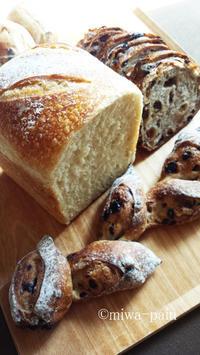 リハビリ第1弾はタルイさん! - パンある日記(仮)@この世にパンがある限り。