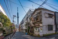 記憶の残像 2017年 花の東京 -42 東京都墨田区向島  - ある日ある時 拡大版