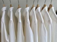 幸せな白シャツ - madameHのバラ色の人生