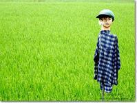 【と】ドッキリ案山子:どっきりかかし - ネコニ☆マタタビ
