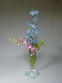 活け直し季節の花々(デルフィニウム、デンファレ、グズマニア、タマスダレ) - 活花生活(2)