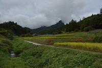 9月23日 稲穂が実を熟す季節 - 光画日記