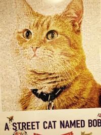 映画『ボブという名の猫』 - 楽しそうだ!英・中・韓
