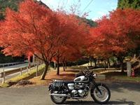 ちょっと早い紅葉ネタです - 60代も元気に楽しむバイクライフ