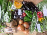 今週の野菜セット 9月4週目 - まるみど農園のあれこれ日記