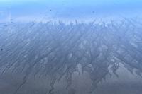 初秋&秋谷海岸 - さいたま日記