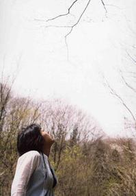 10/14-16 越後と會津の交流展食と映画と手仕事と - にいがた銀花+チクチクちく針仕事の会 niigata ginka+Association of chiku-chiku needle work