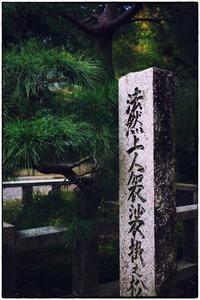 散歩長岡京-63 - Hare's Photolog