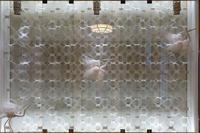 飛鳥乃温泉(4) - アンチLEICA宣言