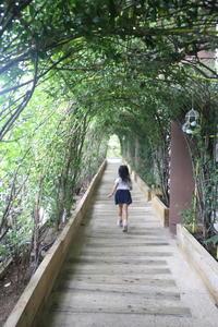 リゾナーレ熱海へ 〜 ツリーハウス「森の空中基地・くすくす」〜 - 旅するツバメ                                                                   --子供と一緒でも自分らしい海外旅行を--
