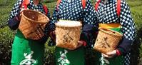 お茶な9月。 ~最終章 ちょっといっぷく 宇治の旅~ - 神戸・芦屋発 お茶とお菓子とテーブルコーディネート