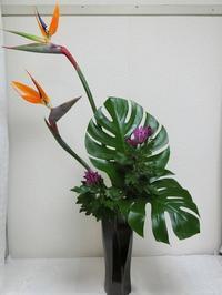 今日のお稽古花 ~ストレリチア~ - 花とaromaとうさぎとかのん