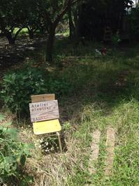アトリエエトセトラ居心地のいい森の住人と小屋 - 奈良のセラピスト、ナンシー日記