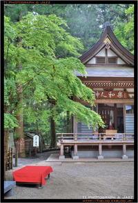 宝登山神社 in HDR Part 2 - TI Photograph & Jazz