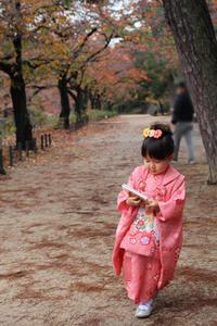 昨年の七五三 4歳の娘の成長のありがたさ - ひづきの森 「はじまりはお家から」