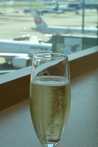 只今、バスク地方を旅行中(その1)(羽田空港でモモコを想う) - 旅プラスの日記