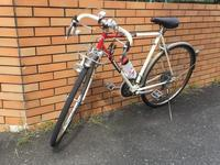 Just an old randoneur - Just an old randonneur