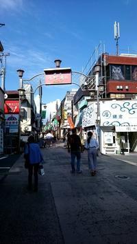 鎌倉 小町通 と、幻日と、IKEA - 午睡のあと うめももさくら