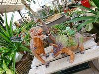 恐竜 - NATURALLY